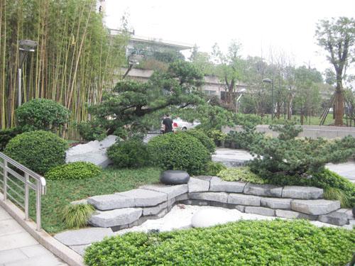 挡土墙绿化设计