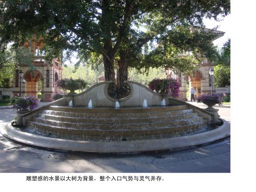 雕塑感的水景以大树为背景,整个入口气势与灵气并存