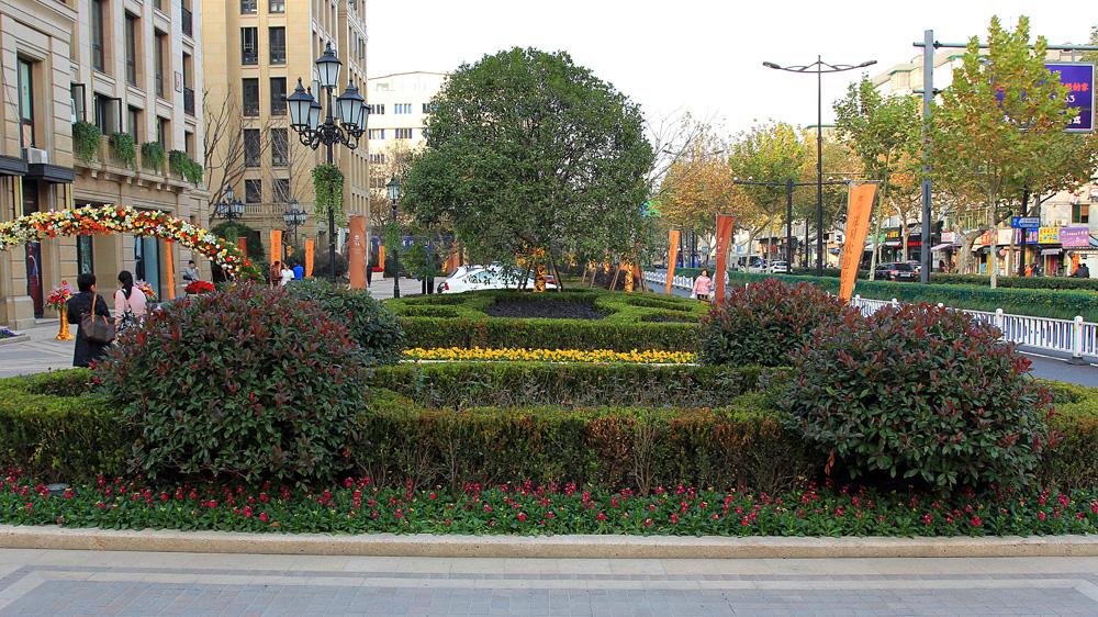 赛丽绿城61丽园绿化工程 - 2013全国风景园林工程