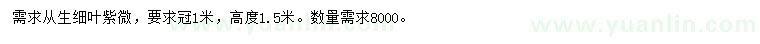 2020316914367084.jpg