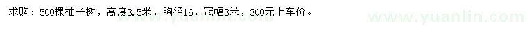 202033094511167.jpg