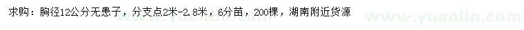 2020420169179606.jpg