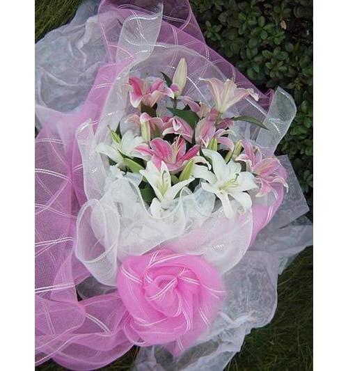 花束包装纱网