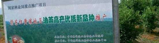 东乡县生态园林种苗有限公司