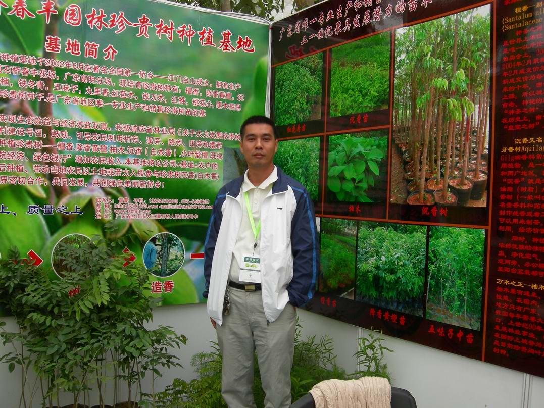 广东省石桥春丰园林珍贵树种植基地