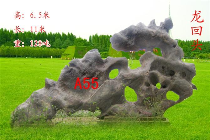 费县文江核桃研究所