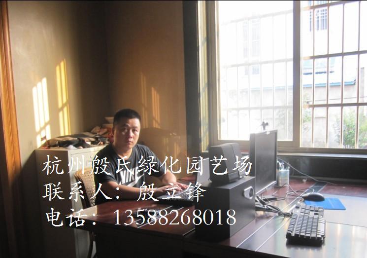 杭州萧山殷氏绿化园艺场