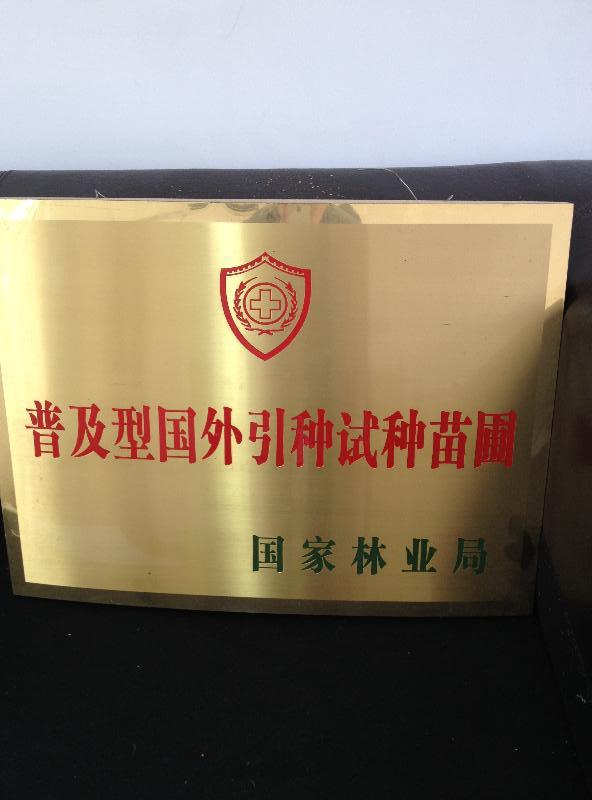 上海万草堂苗木经营基地