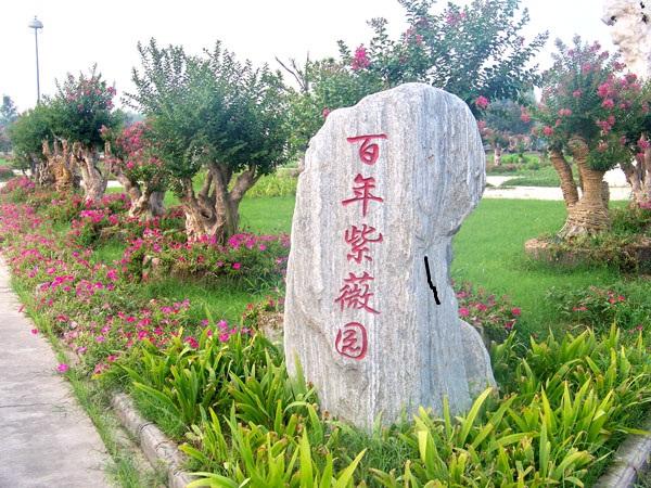 豫鄢花木场