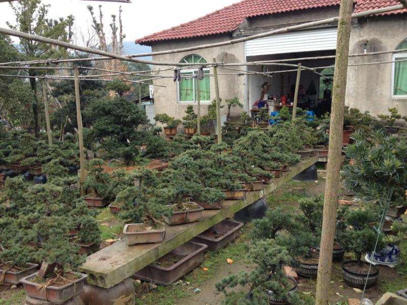 杭州萧山浩洁园艺场