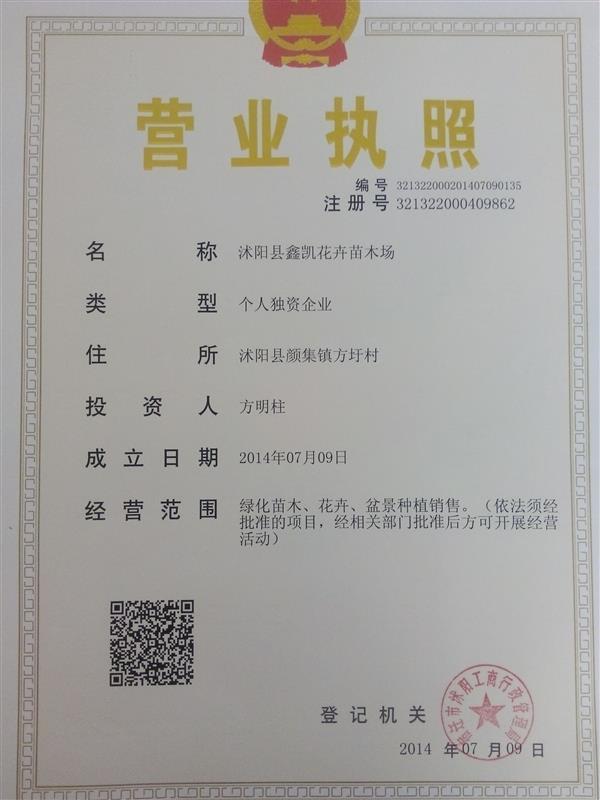 沭阳县鑫凯花卉苗木场