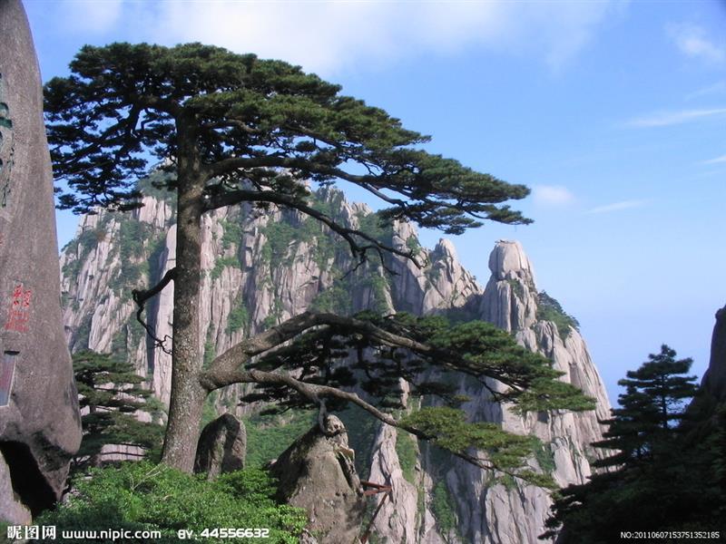 杭州霖景市政园林工程有限公司