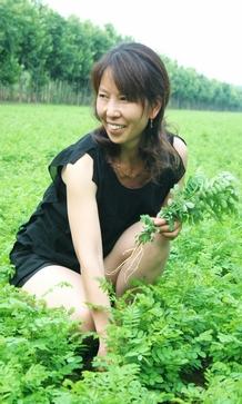 民权川姐苗木种植有限公司