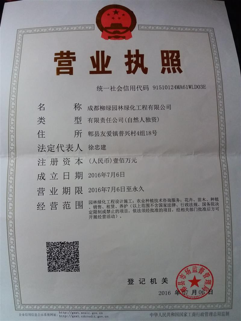 成都柳绿绿化苗木批发中心