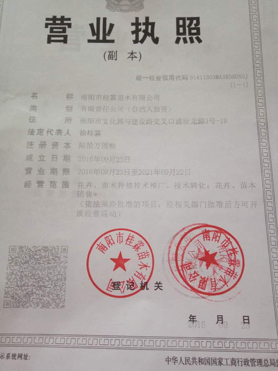 南阳市桂霖苗木有限公司