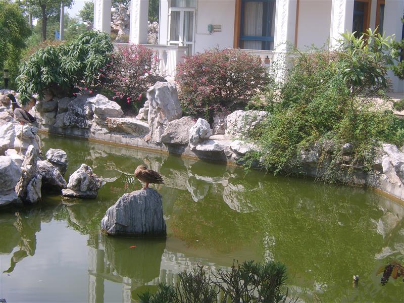 上海怡辉绿化养护有限公司