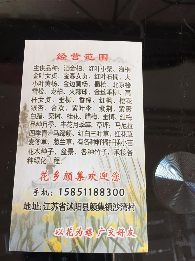 宿迁东吴园林基地