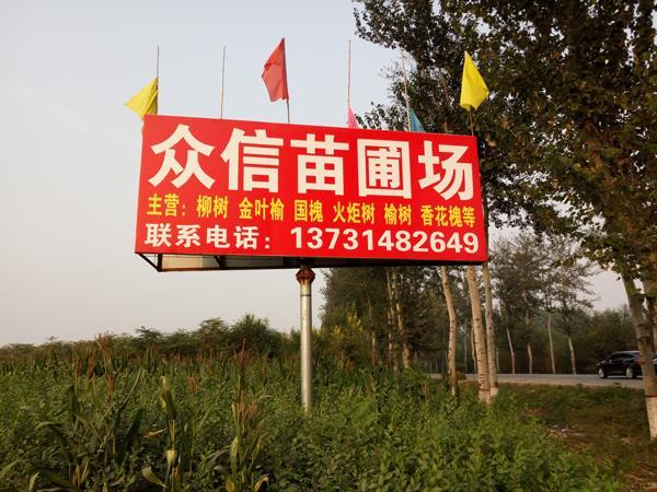 河北省博野县众信苗圃场
