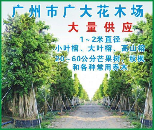 广州时代园林绿化有限公司