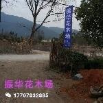 广西桂林振华花木场