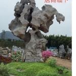 安徽佳誉园林景观石基地