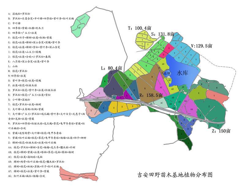 吉安田野花卉苗木有限公司
