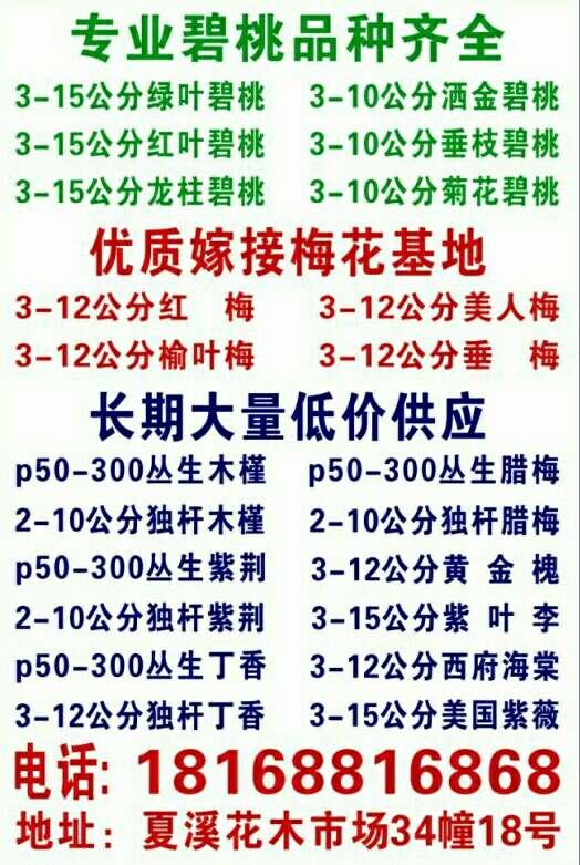 江苏省沃丰园林苗木场
