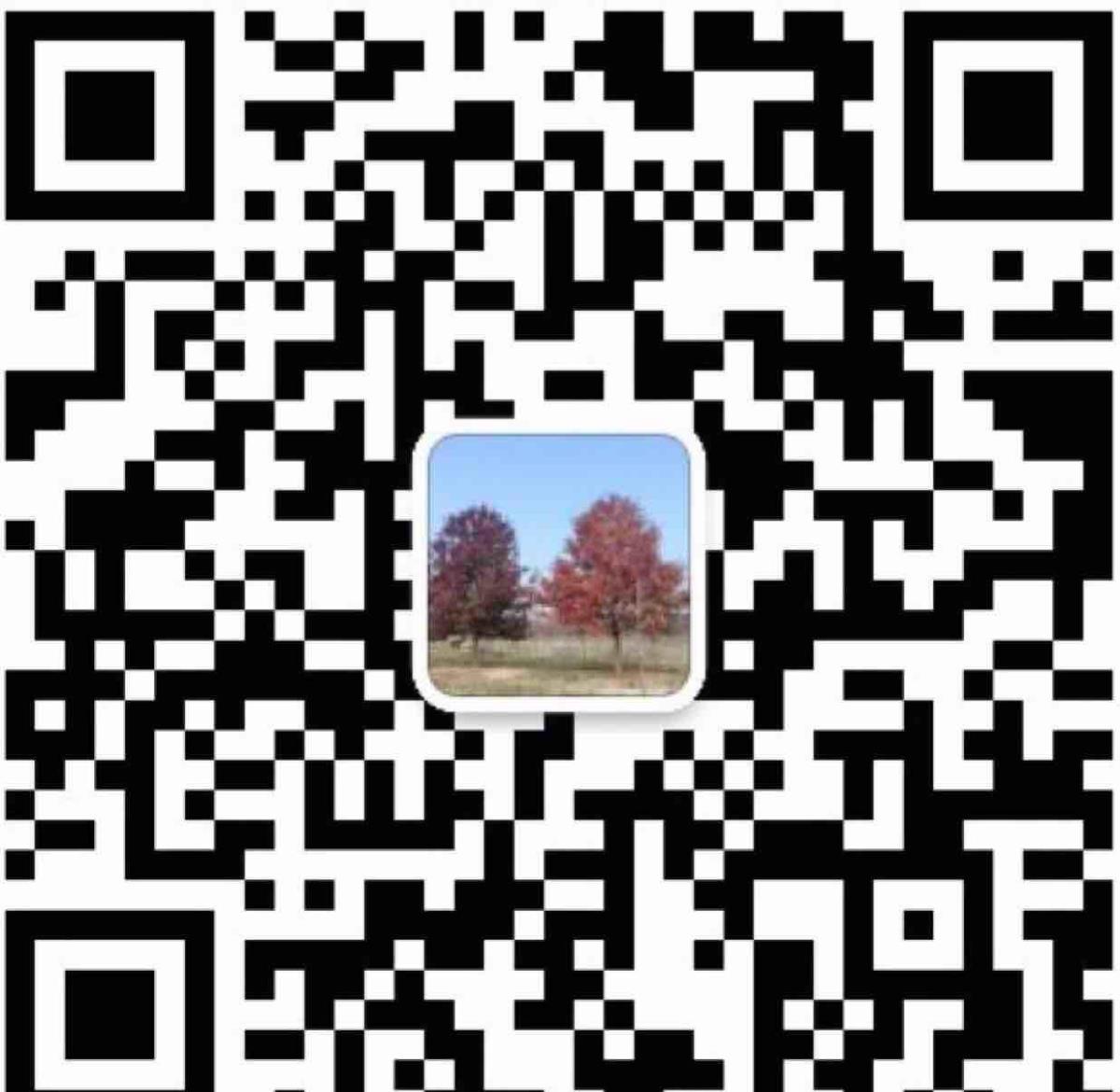 南京聚森园林景观有限公司