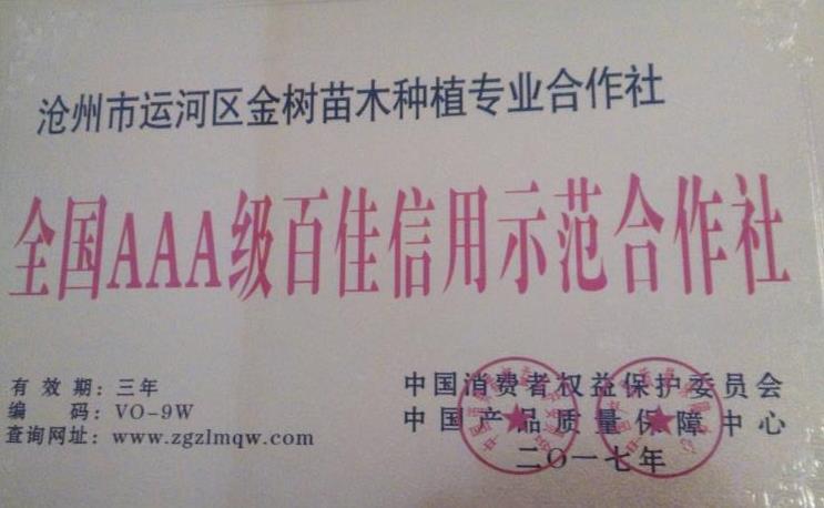 沧州市运河区金树苗木种植专业合作社