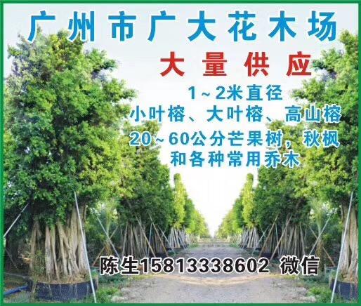广州广大花木基地
