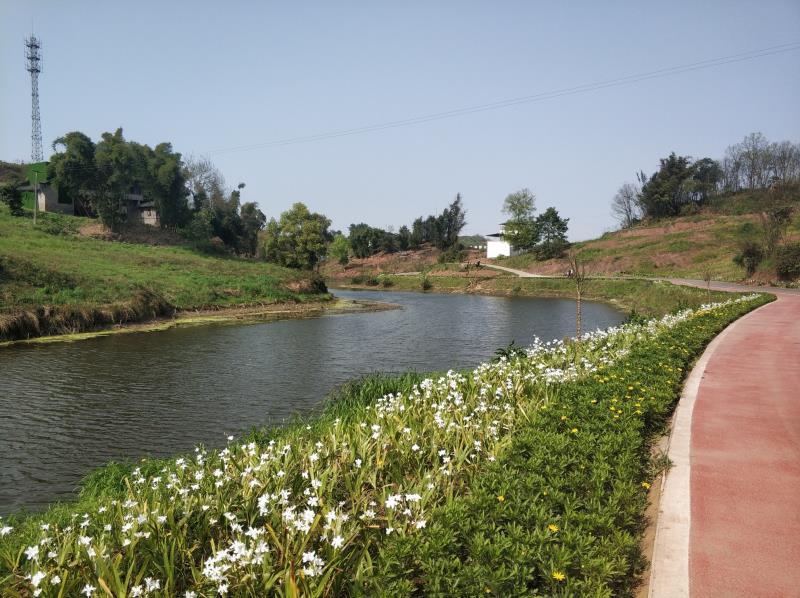 四川泸州许氏花木场