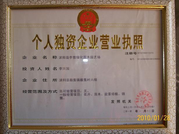 江苏省沭阳县李想绿化苗木园艺场