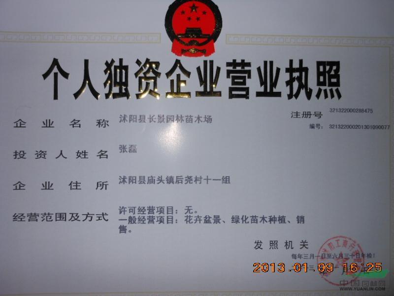 沭阳县长景园林苗木场