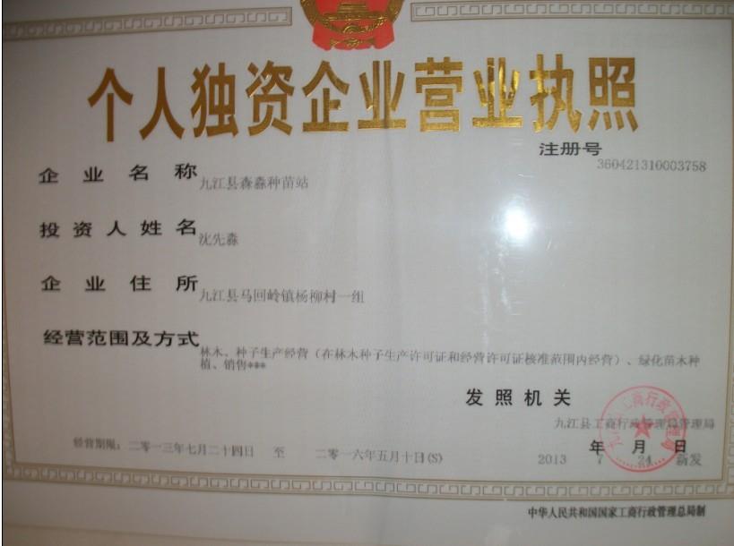 九江县森淼种苗站