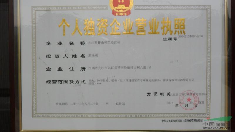 九江县排山种苗经营站
