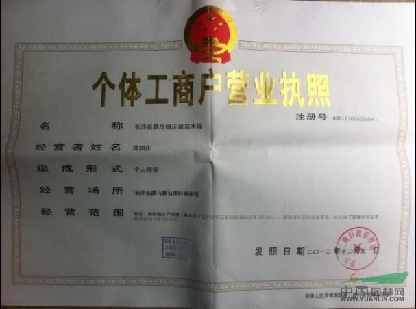 长沙县跳马镇庆诚苗木场