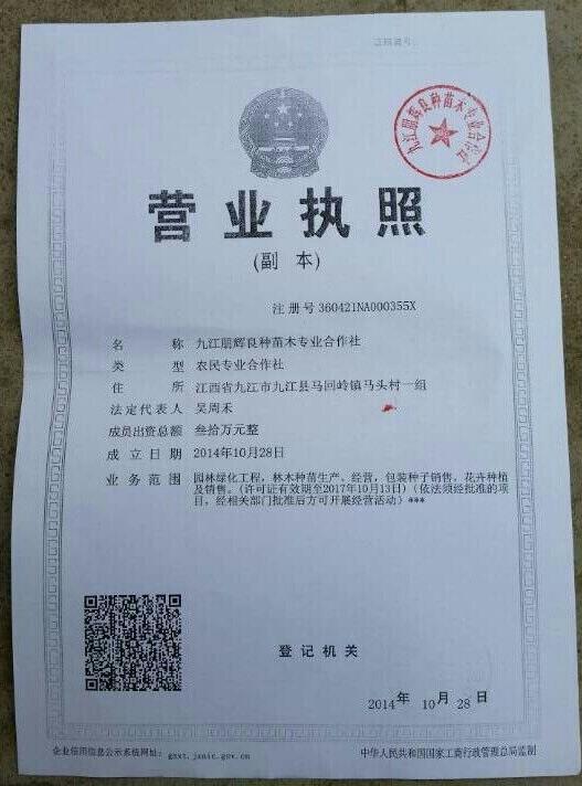 九江朋辉良种苗木专业合作社