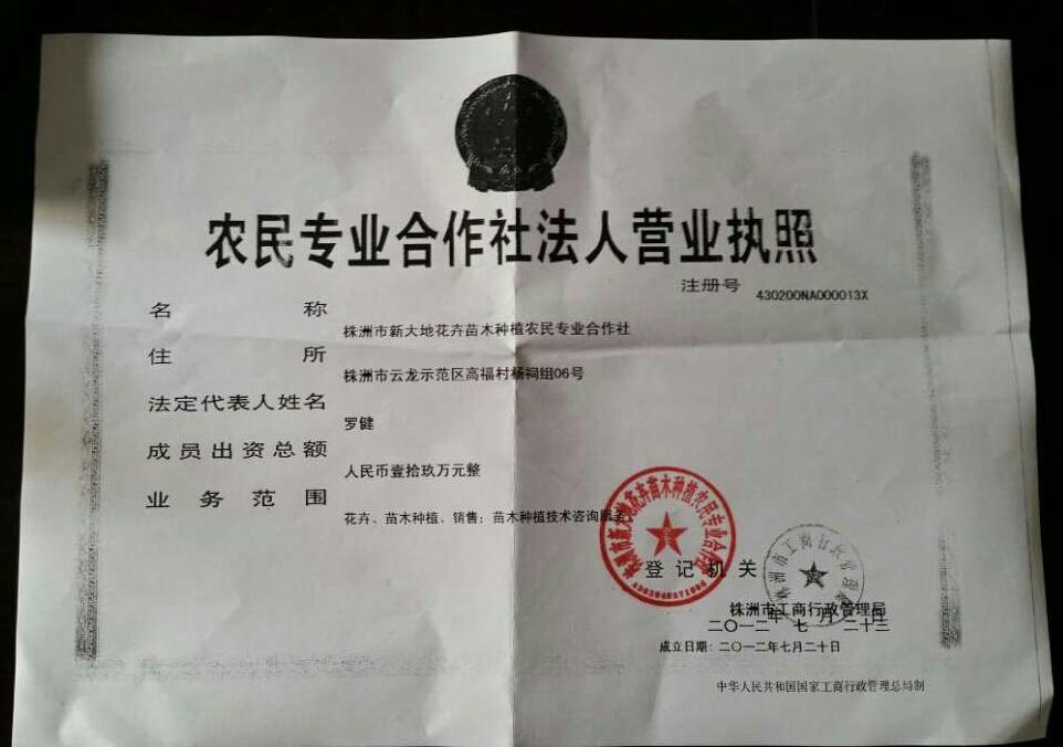 株洲市新大地花卉苗木种植农民专业合作社
