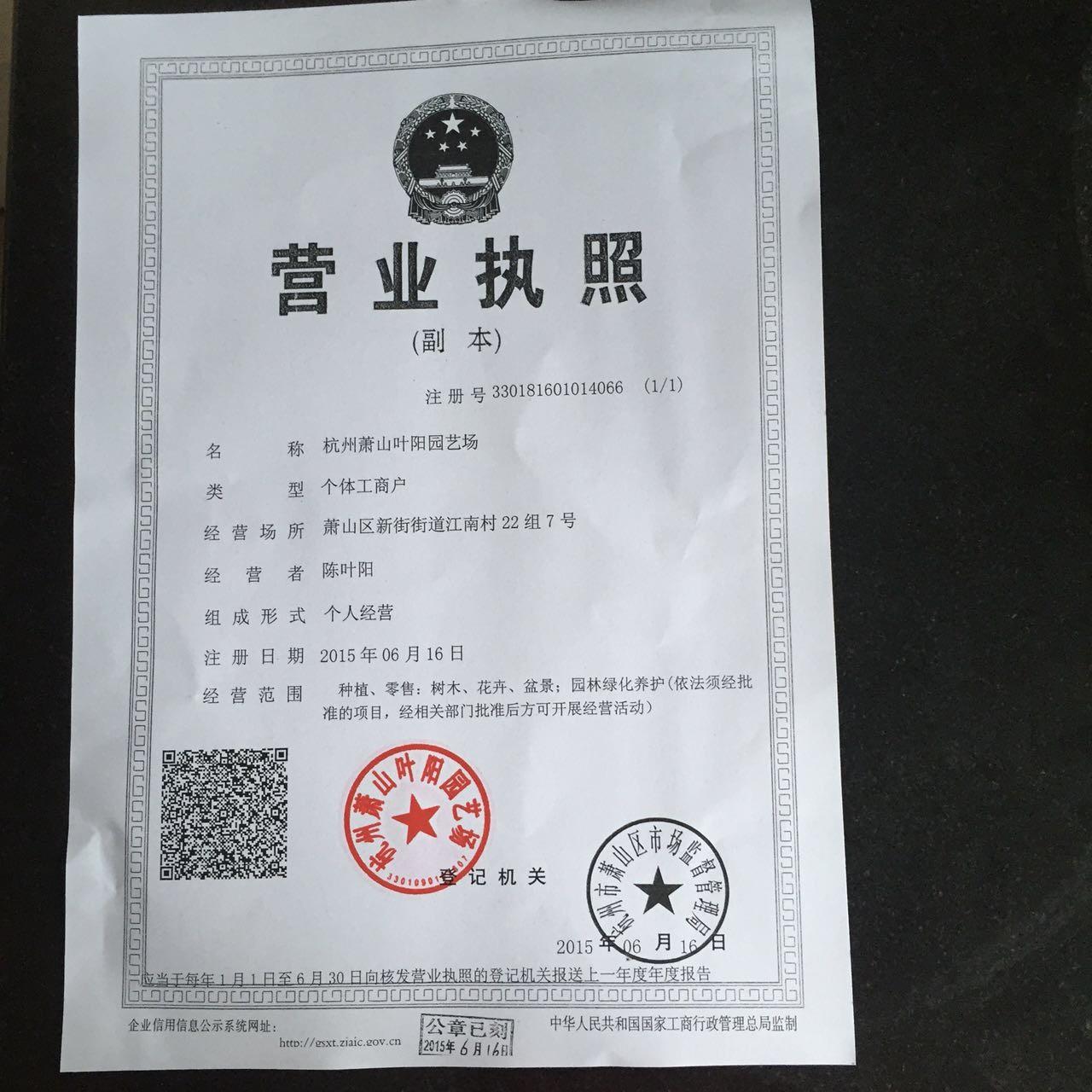 杭州萧山叶阳园艺场