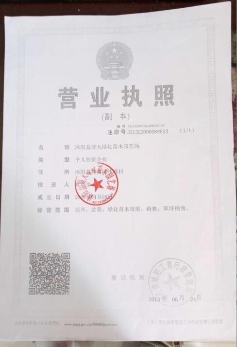 沭阳县博大绿化苗木园艺场