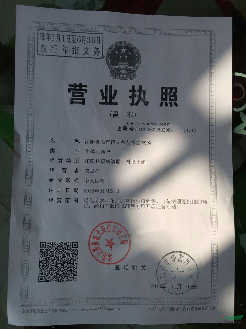 沭阳县颜集镇光荣苗木园艺场