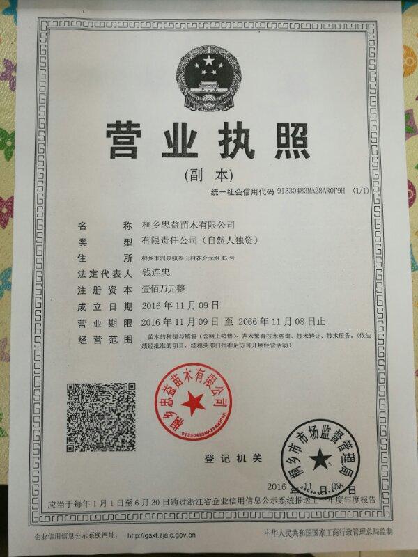 桐乡忠益苗木有限公司