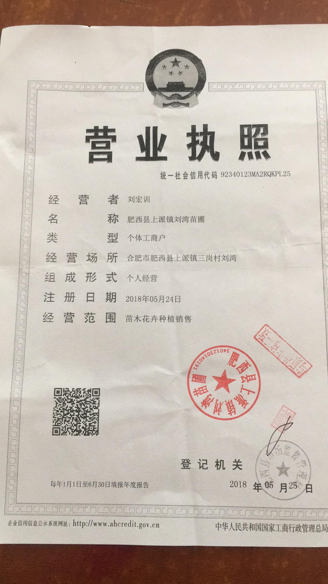 肥西县上派镇刘湾苗圃