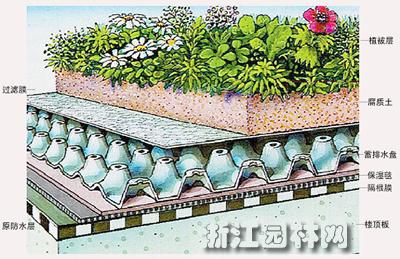 较好地解决了轻型平屋顶绿化的技术难题,栽培工艺配套,成熟.