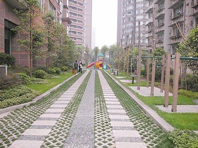 道路绿化中的植物配置(图)