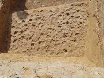 西周墓葬夯土层结构图