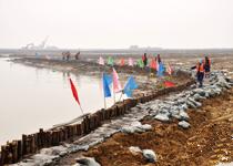 巢湖/巢湖生态湿地水生植物将栽培